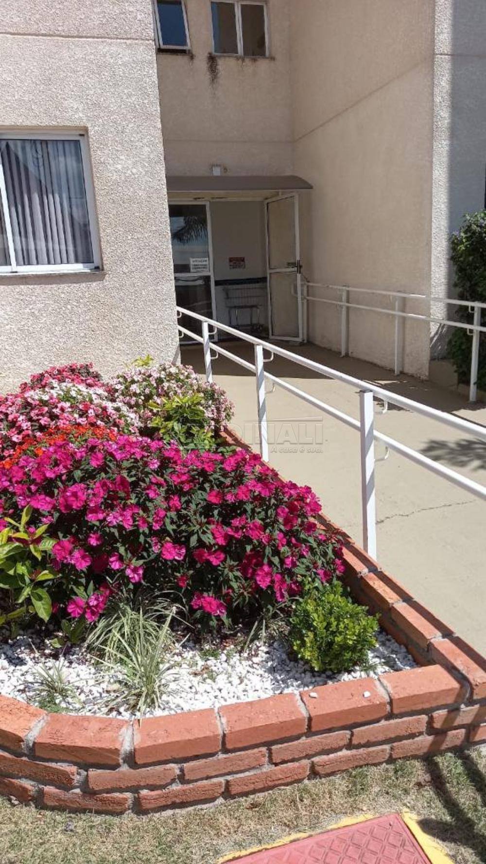 Alugar Apartamento / Padrão em São Carlos R$ 920,00 - Foto 32