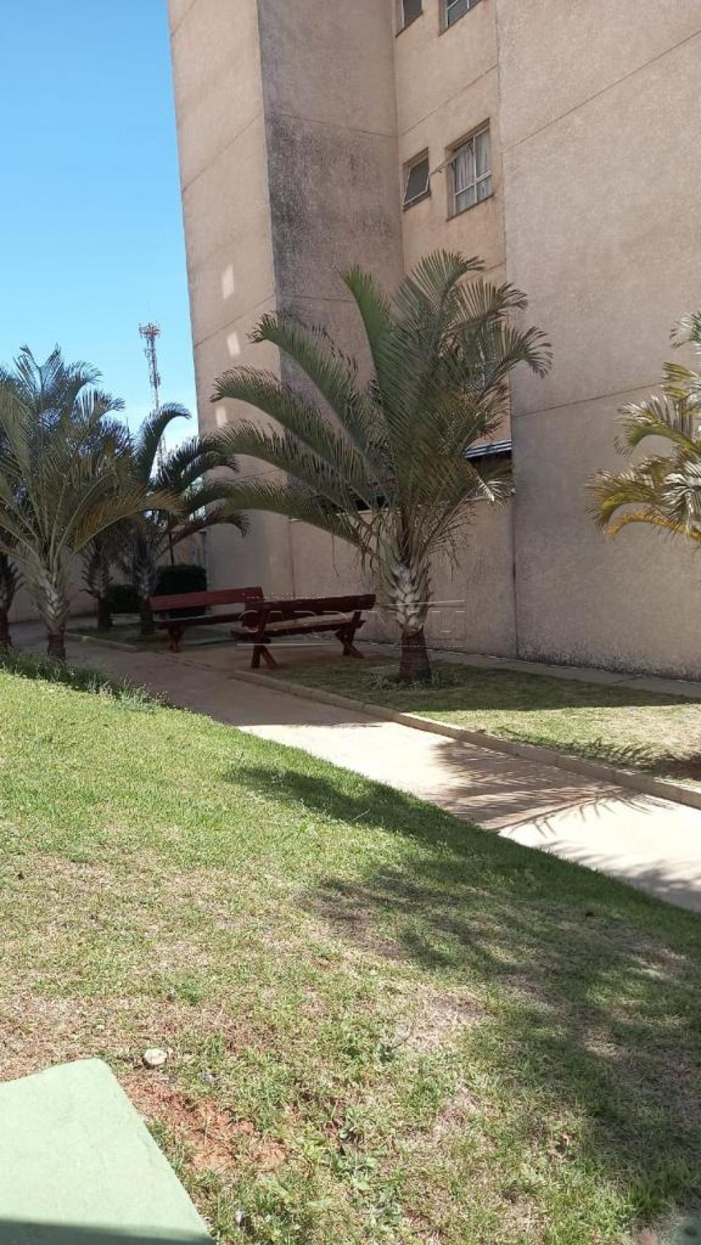 Alugar Apartamento / Padrão em São Carlos R$ 920,00 - Foto 33