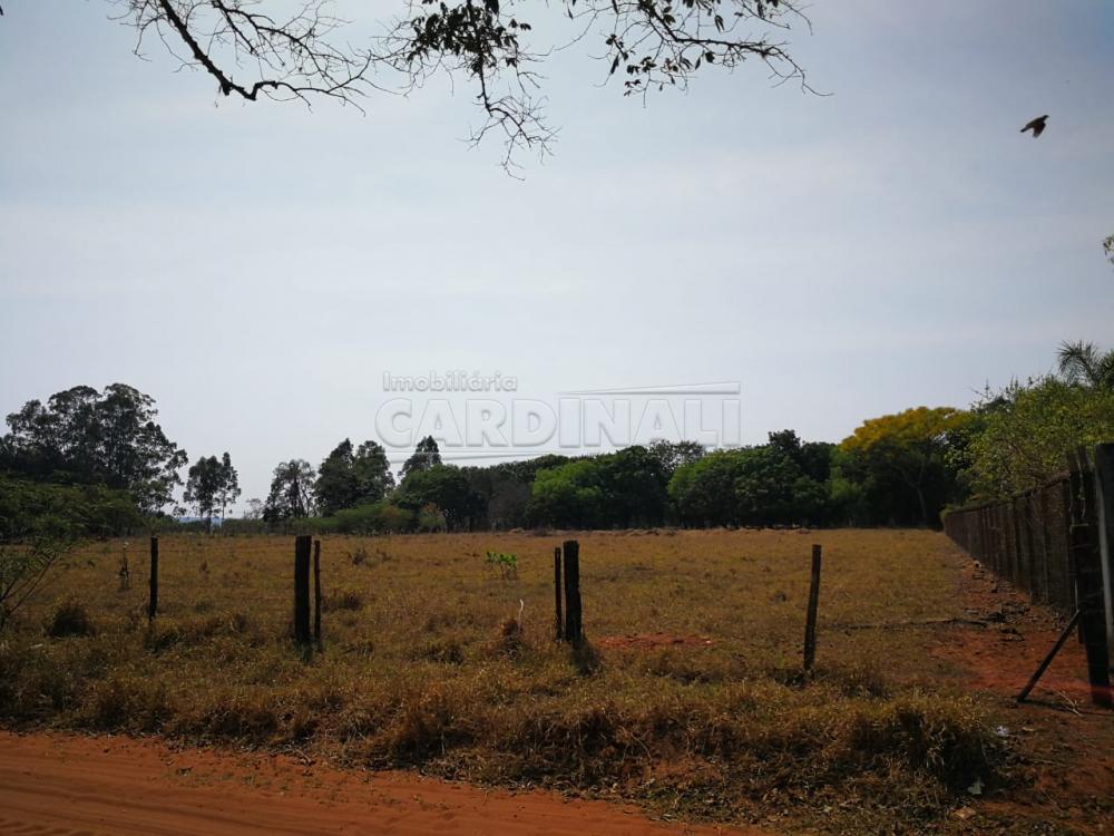 Comprar Rural / Terreno sem Condomínio em São Carlos apenas R$ 250.000,00 - Foto 3