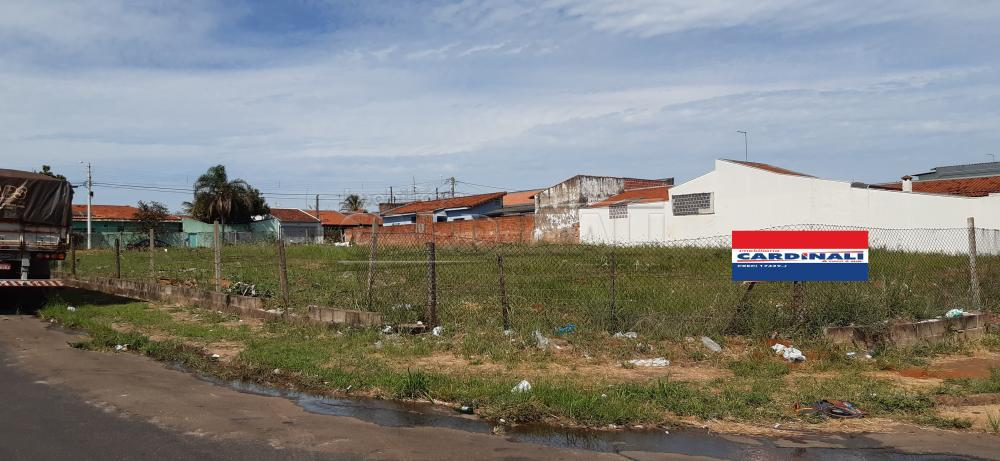 Alugar Terreno / Lote em São Carlos apenas R$ 700,00 - Foto 4