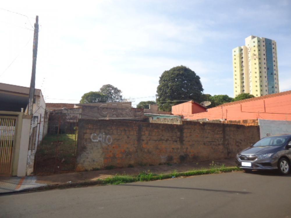 Alugar Terreno / Padrão em São Carlos R$ 889,00 - Foto 4