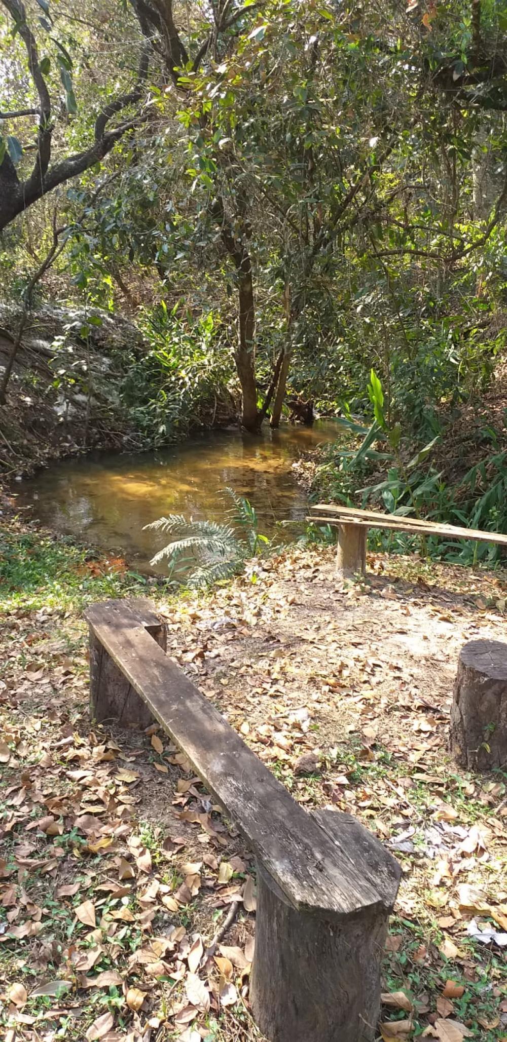 Comprar Rural / Chácara sem Condomínio em São Carlos R$ 1.500.000,00 - Foto 12