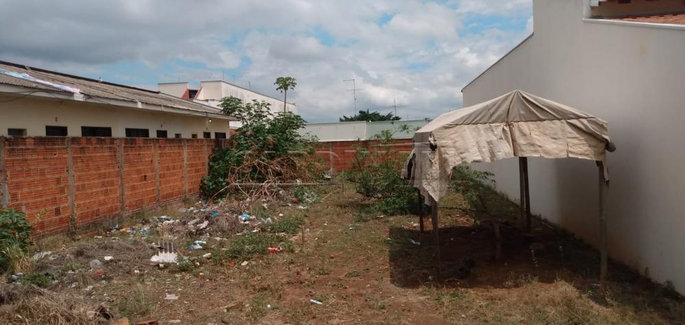 Comprar Terreno / Padrão em São Carlos R$ 135.000,00 - Foto 3
