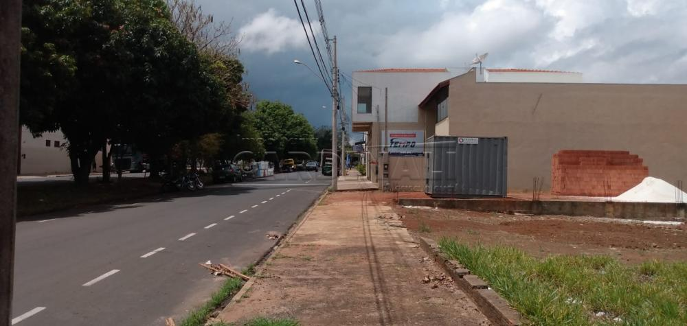 Comprar Terreno / Padrão em São Carlos R$ 300.000,00 - Foto 3