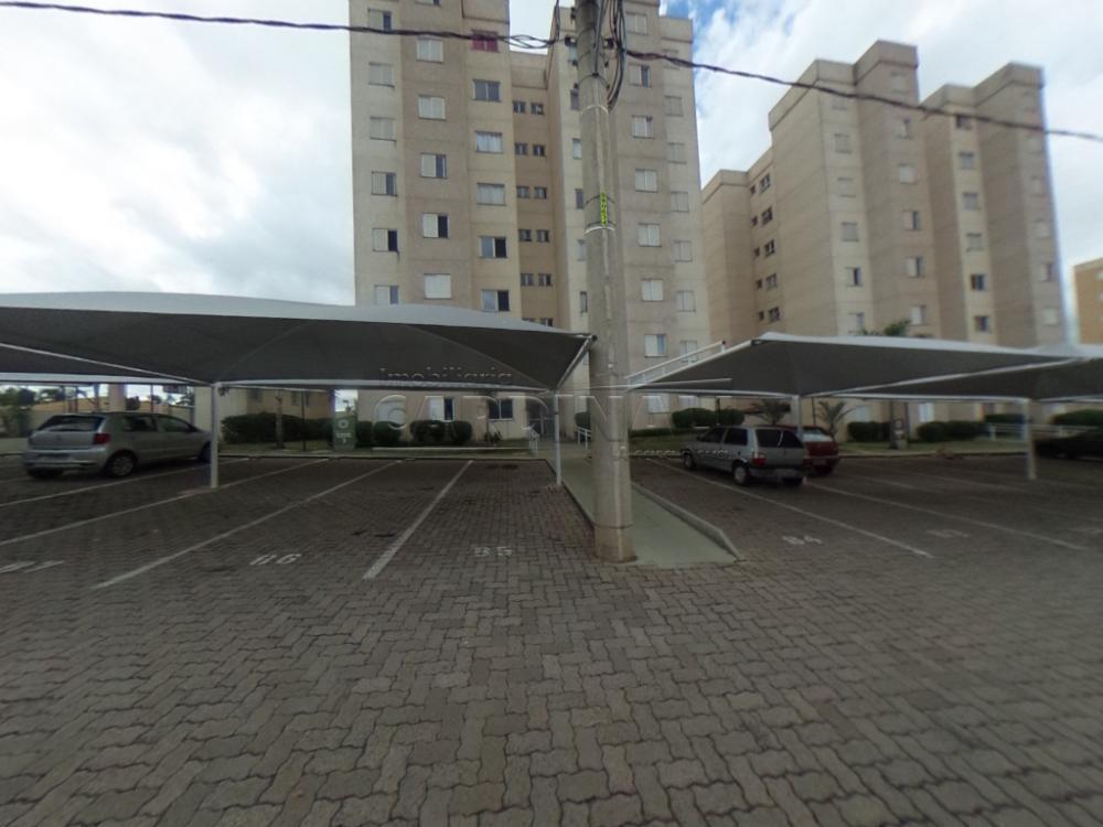 Alugar Apartamento / Padrão em São Carlos R$ 920,00 - Foto 47