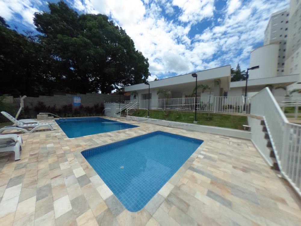 Alugar Apartamento / Padrão em São Carlos R$ 778,00 - Foto 21