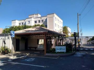 Apartamento / Padrão em São Carlos Alugar por R$625,30