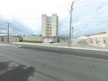 Alugar Apartamento / Padrão em São Carlos R$ 920,00 - Foto 40