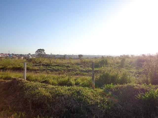 Sao Carlos Area Rural de Sao Carlos Rural Venda R$7.180.000,00