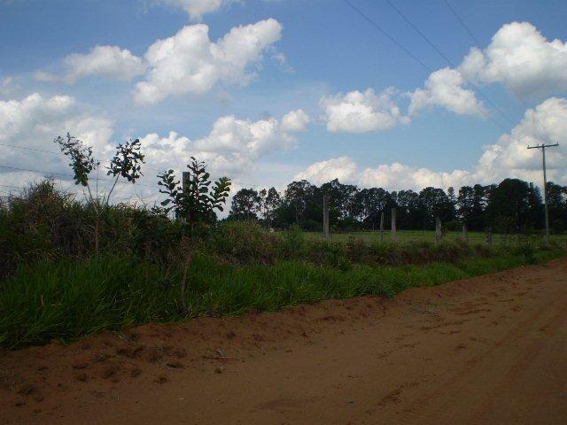 Sao Carlos Area Rural de Sao Carlos Rural Venda R$24.200.000,00
