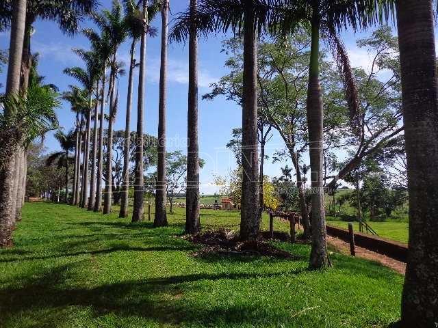 Sao Carlos Area Rural de Sao Carlos Rural Venda R$10.000.000,00