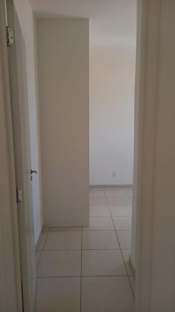 Alugar Apartamento / Padrão em São Carlos R$ 920,00 - Foto 24