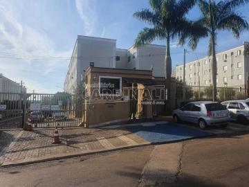 Alugar Apartamento / Padrão em Araraquara. apenas R$ 800,00