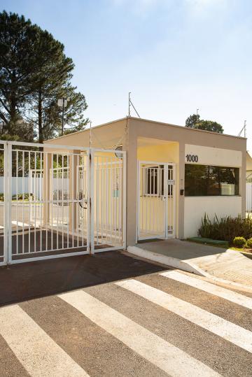 Alugar Apartamento / Padrão em São Carlos. apenas R$ 375.000,00