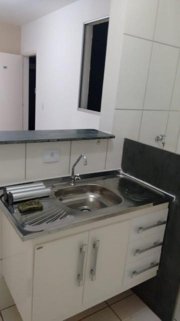 Apartamento / Padrão em Araraquara Alugar por R$500,00
