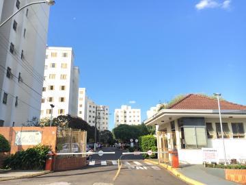 Alugar Apartamento / Padrão em São Carlos. apenas R$ 900,00