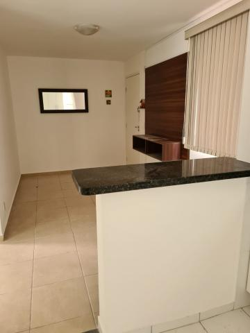 Alugar Apartamento / Padrão em São Carlos. apenas R$ 730,00
