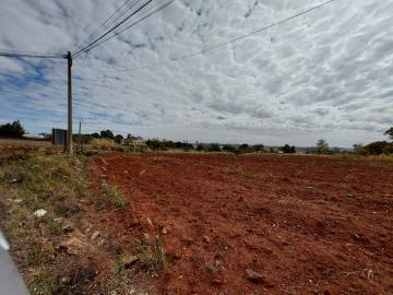 Araraquara Jardim Arco Iris Comercial Venda R$2.590.100,00  Area do terreno 63.20m2
